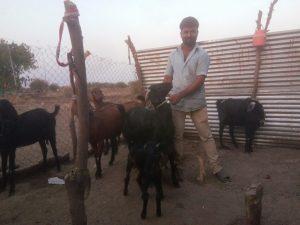 अशोक आमटे, बीड जिल्ह्यातील गेवराई तालुक्यात खळेगाव येथील शेतकरी. क्रेडिटः वर्षा तोरगाळकर