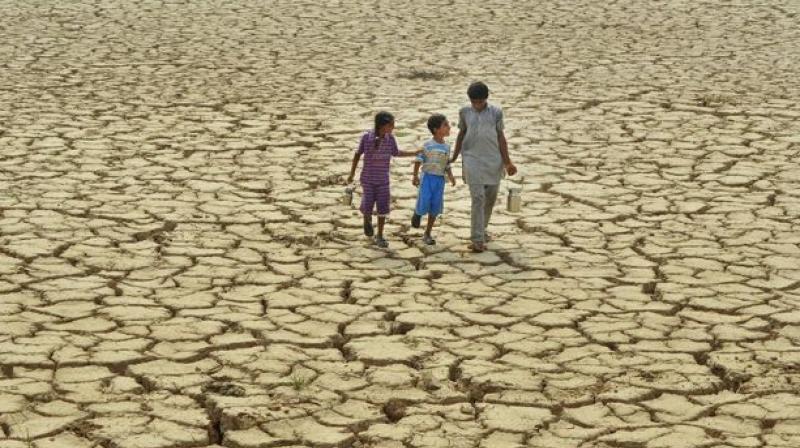 'जलयुक्त शिवार योजने'चा फज्जा