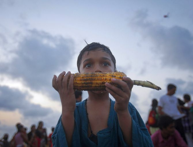 जागतिक भूक निर्देशांक : ११७ देशांमध्ये भारत १०२ वा