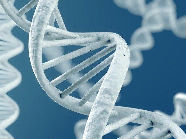अज्ञात पूर्वज : आफ्रिकन डीएनए अभ्यासातून रहस्यमय शोध