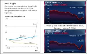 Figure 6 Different indicators of global prices of meat and cattle, March 2020 (Source: Wall Street Journal and CNBC)