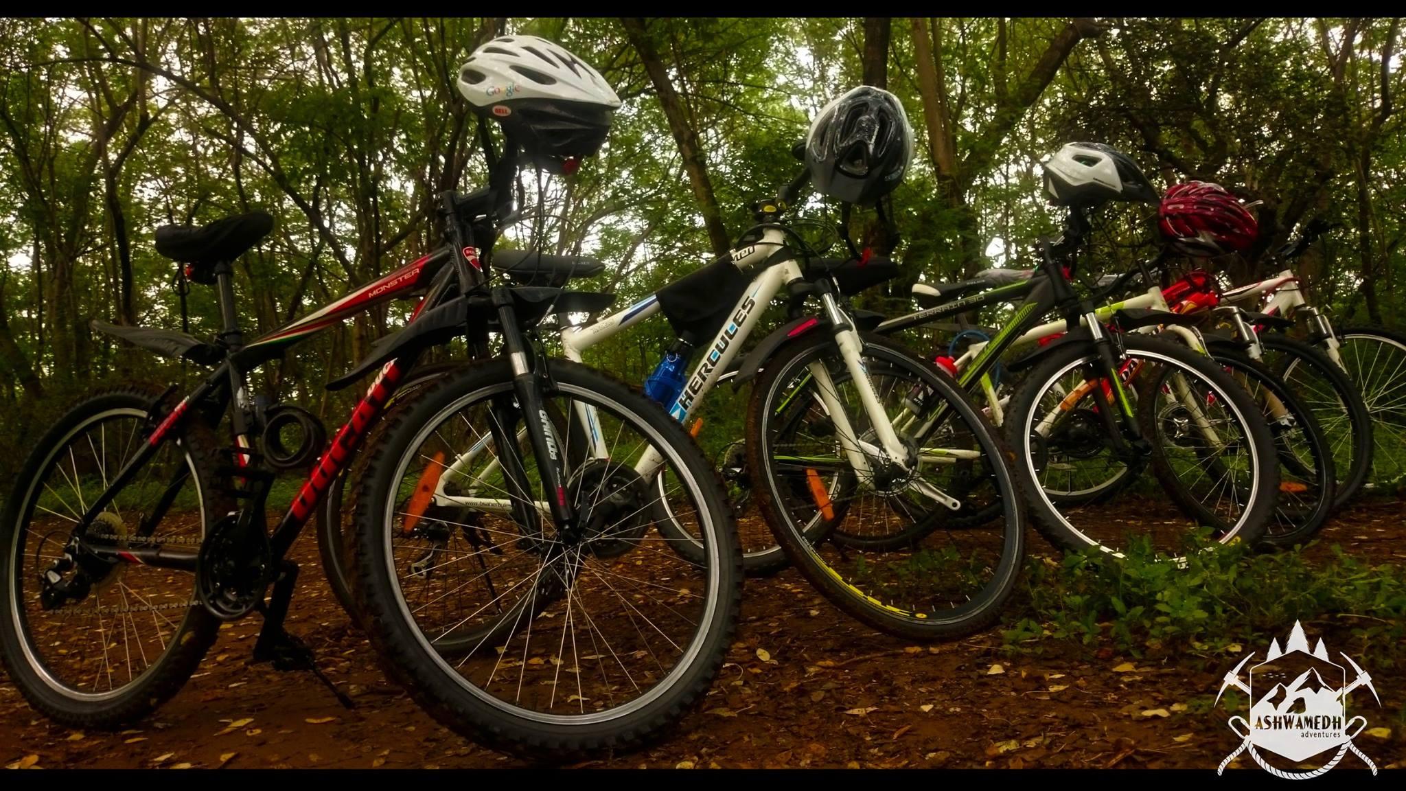 'सायकल टू वर्क'
