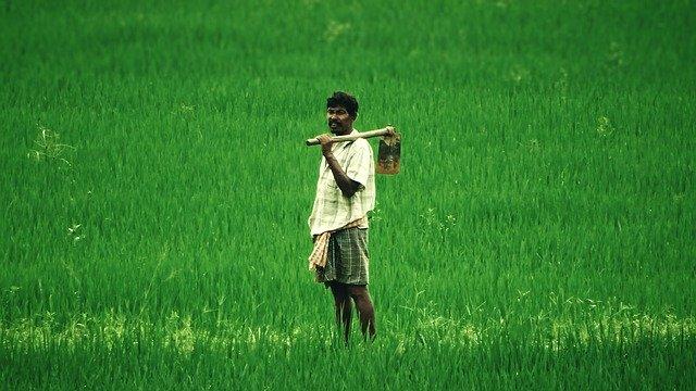 शेतकरी आत्मनिर्भरतेचे वास्तव