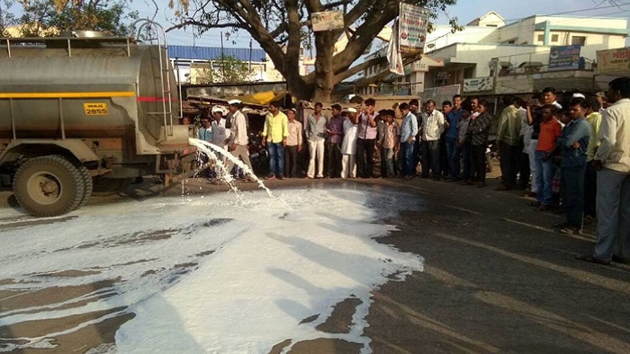 दूध आंदोलनः अमेरिकेच्या दुग्ध उत्पादनांना बाजारपेठ खुली