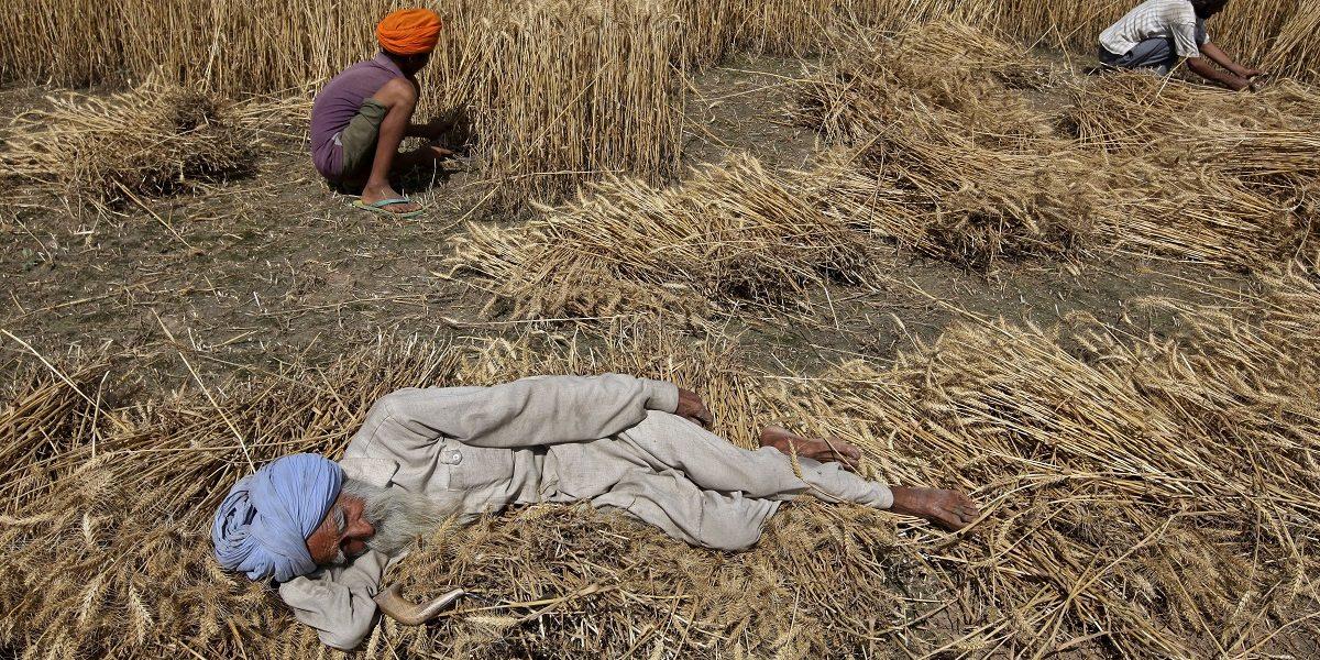 शेतीप्रश्न, शेतीचे प्रश्न व शेतकऱ्यांचे आंदोलन