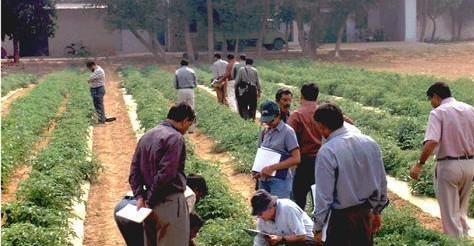 कृषी अभ्यासक्रमाच्या विद्यार्थ्यांना शुल्क सवलत